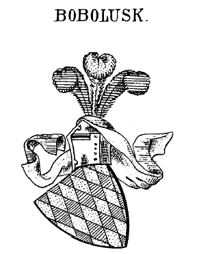 1437 – před 1484 – páni z Lichtenburka