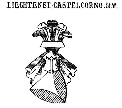1747 – 1804 – Salm – Neuburgové